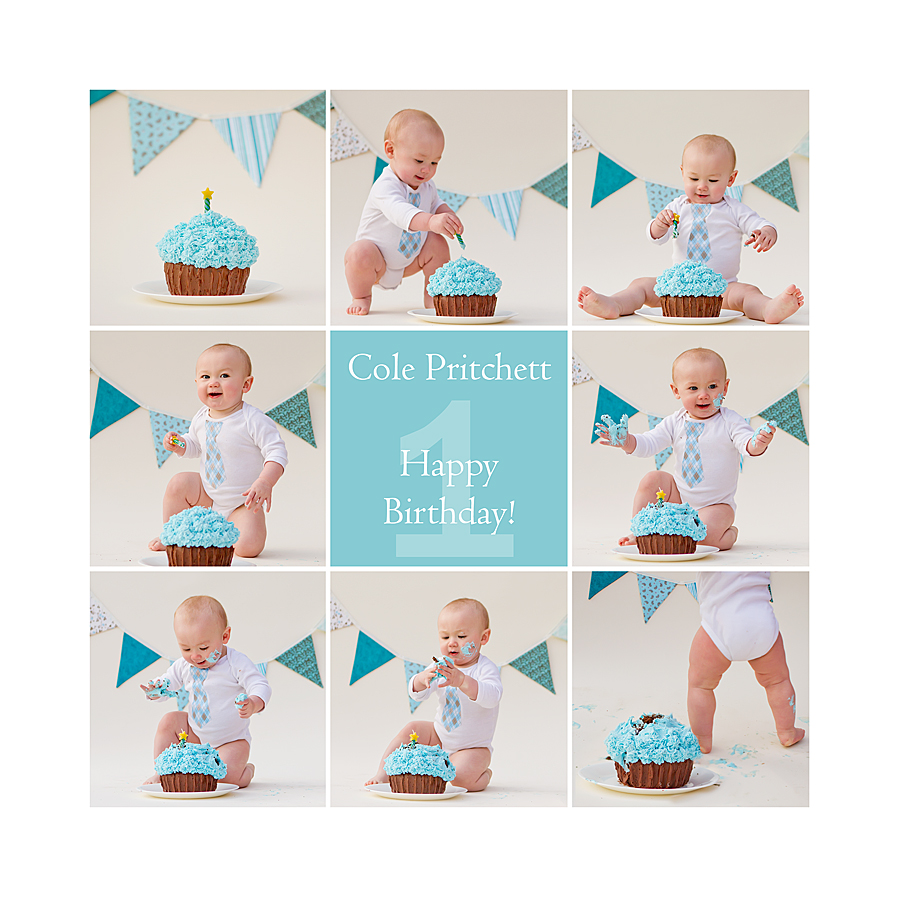 First Birthday Cake Smash Photoshoot! – Ginger Pritchett Photography ...